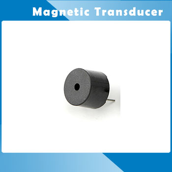 Magnetic Transducer HCM12A